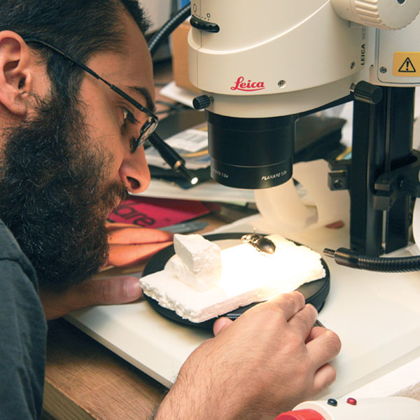 male ucf student looking at microscope in lab