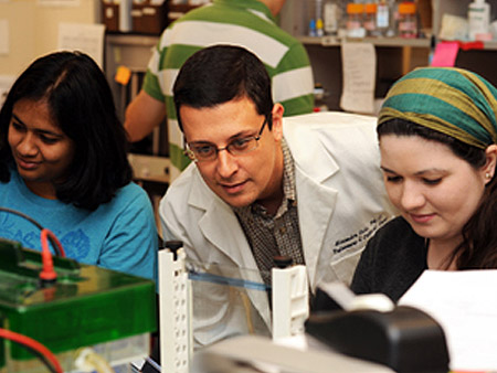 Gates Foundation Awards Ucf Grant For Hiv Research