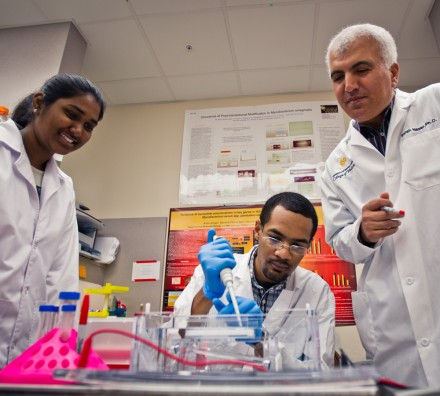 UCF Licenses Bacteria Test for Possible Crohn's Treatment