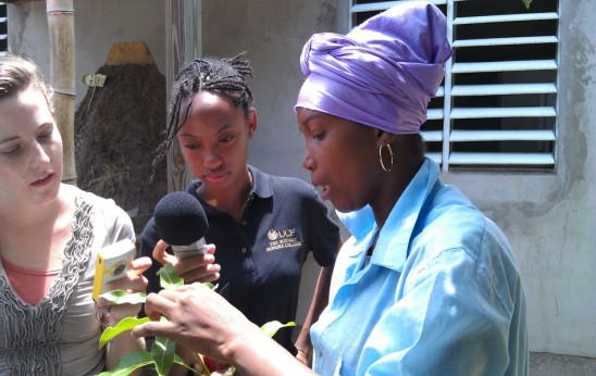 Honors Students Take Interdisciplinary Action in the Caribbean