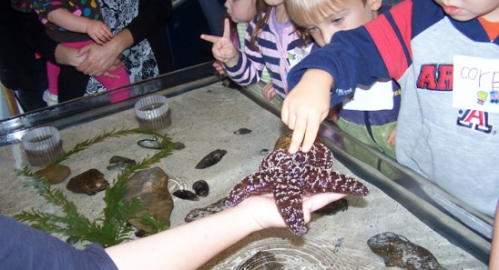 UCF Students Help Preschoolers Learn About Water Creatures