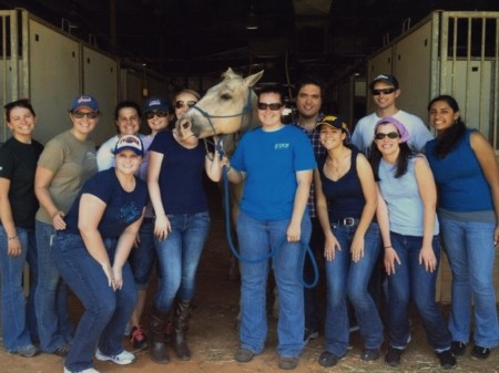 Med Students Learn Horsemanship to Improve Patient Care Skills