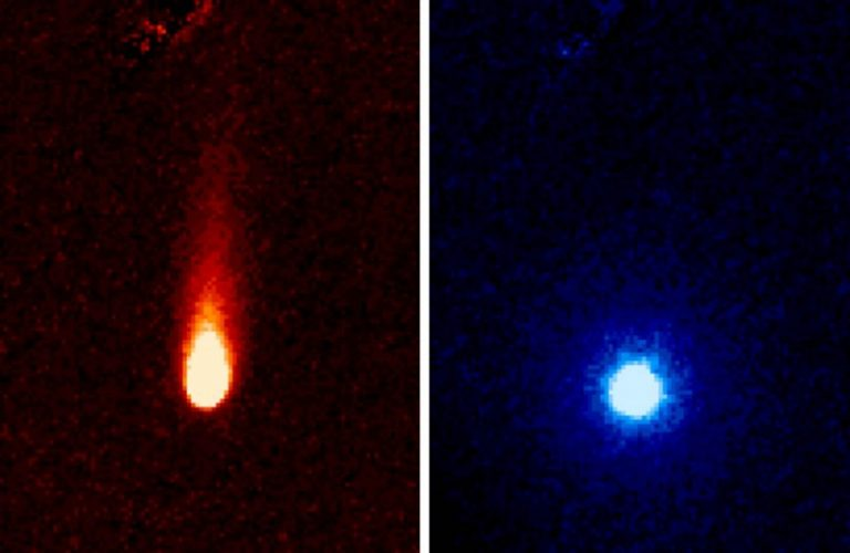"""These images from NASA's Spitzer Space Telescope of C/2012 S1 (Comet ISON) were taken on June 13, when ISON was 310 million miles (about 500 million kilometers) from the sun. The images were taken with the telescope's infrared array camera at two different near-infrared wavelengths, 3.6 and 4.5 microns (the representational colors shown were selected to enhance visibility). The 3.6-micron image on the left shows a tail of fine rocky dust issuing from the comet and blown back by the pressure of sunlight as the comet speeds towards the sun (the tail points away from the sun). The image on the right side shows the 4.5-micron image with the 3.6-micron image information (dust) removed, and reveals a very different round structure -- the first detection of a neutral gas atmosphere surrounding ISON. In this case, it is most likely created by carbon dioxide that is """"fizzing"""" from the surface of the comet at a rate of about 2.2 million pounds (1 million kilograms) a day. Comet ISON (officially known as C/2012 S1) is, like all comets, a dirty snowball made up of dust and frozen gases like water, ammonia, methane and carbon dioxide -- some of the fundamental building blocks that scientists believe led to the formation of the planets 4.5 billion years ago. ISON will pass within 724,000 miles (1.2 million kilometers) of the sun on Nov. 28, making it a sungrazer comet that will evaporate its ices and even its rocky dust near perihelion, revealing even more of the comet's composition. NASA is bringing to bear a vast fleet of spacecraft, instruments, and space- and Earth-based telescopes to study this rarely-seen type of comet over the next year. ISON stands for International Scientific Optical Network, a group of observatories in ten countries who have organized to detect, monitor, and track objects in space. ISON is managed by the Keldysh Institute of Applied Mathematics, part of the Russian Academy of Sciences. The complete list of observers is: C.M. Lisse, R.J. Vervack, and H.A"""