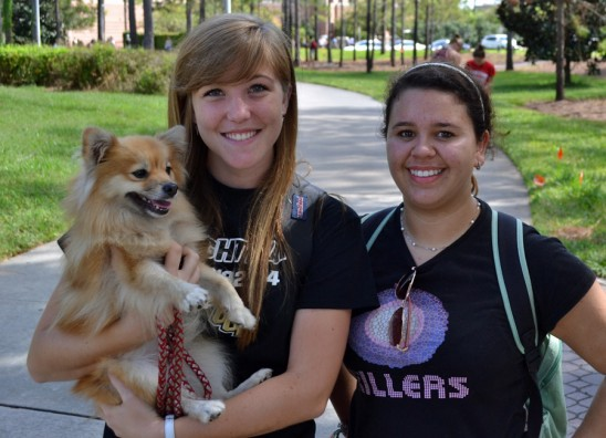 Rescue Pups Help Relieve Student Stress