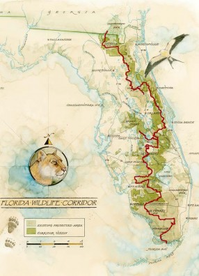 Panel to Discuss Using Preserved Land to Link Florida and Georgia