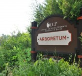 New Greenhouse Means More Opportunity for Arboretum