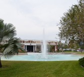 Q&A: Another Day in the Life of UCF's Reflecting Pond