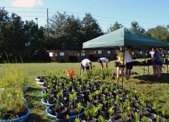 Volunteer UCF Hosts 8th Annual Knights Give Back Saturday