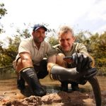 UCF Biology Professor to Handle Electric Eels on National TV
