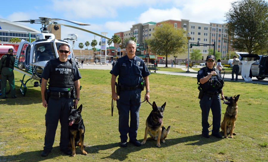 name ucf u2019s new police dog  see magic at thursday u2019s k-9 fundraiser - ucf news