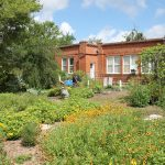 Wildflower Demonstration Garden to Open at UCF's Public History Center