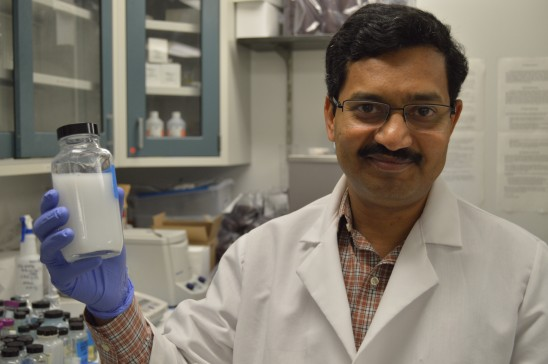 UCF Researcher May Have Found Key to Plague of Citrus Greening
