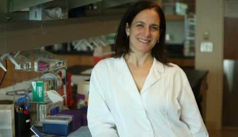 UCF Study: Protein May Trigger Cancer Cell's Metabolism