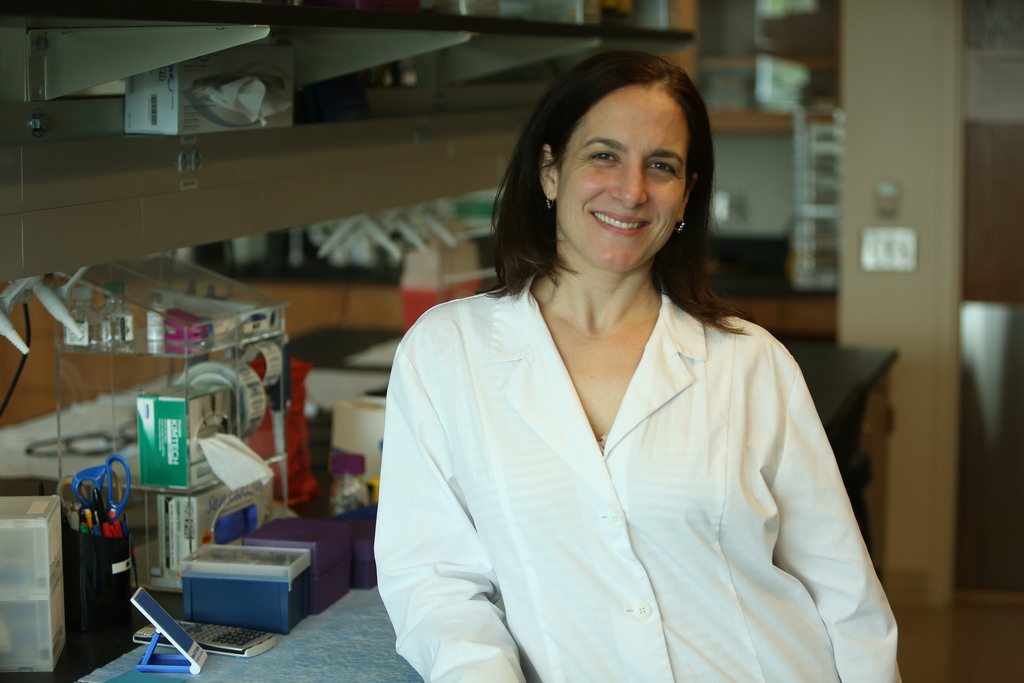 Ucf Study Protein May Trigger Cancer Cell S Metabolism