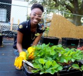 Students Participate in Day of Service