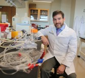 Tracking Disease-Carrying Mosquitos