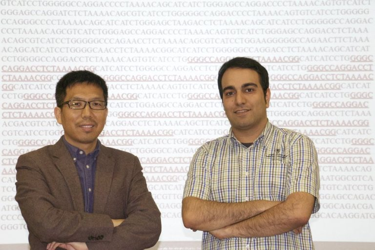 UCF associate professor Shaojie Zhang, left, and graduate student Ardalan Naseri developed technology to help cancer researchers zero in on specific genome sequences.
