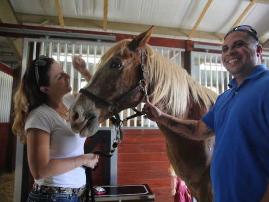 Med School, Osceola County Open Equestrian Therapy Center