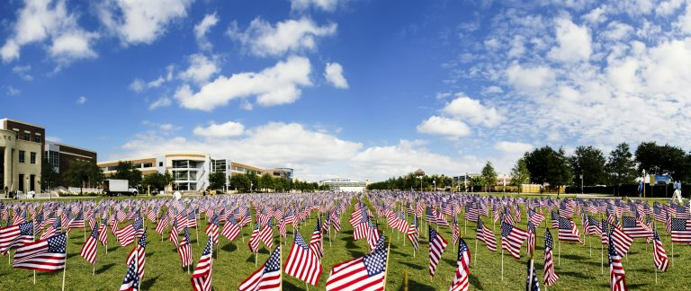 veterans day- american flags in ground