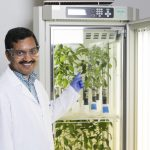 Global Ag Company Licenses UCF Scientist's Tech to Fight Crop Disease