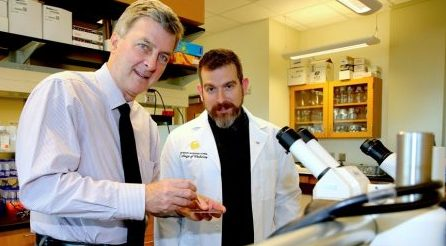 drs-parks-and-willenberg-zika