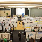 Research Week: Critical Thinking, Making a Difference in the World