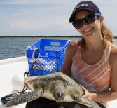 Biologist and Genetics Expert Team Up to Solve Turtle Health Mystery