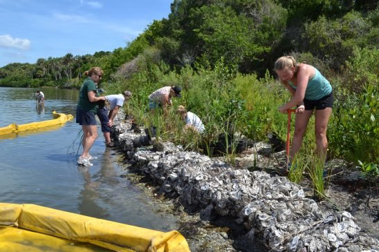 UCF Launches National Center to Find Big-Picture Solutions to Coastal Threats