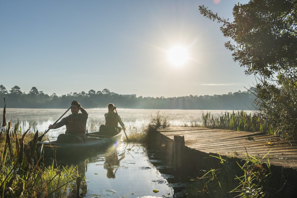 Between volleyball courts and canoe rentals, Lake Claire is a beautiful spot to get active and away from your laptop. (Photo by Bernard Wilchusky)