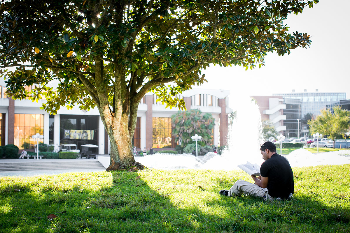 A student studies under the shade provided by a magnolia tree near the Reflecting Pond.