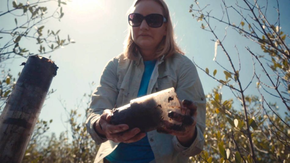 Assistant Professor of Biology Lisa Chambers collects a soil sample fromthe Merritt Island National Wildlife Refuge to help study wetland ecosystem changes over time.