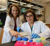 """Live Like Bella"" Helps Med School Tumor Research"