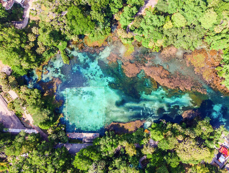 aerial view of Rainbow River