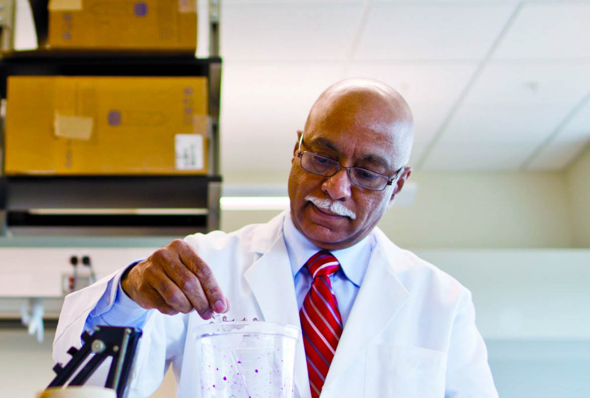 Dr. Sampath Parthasarathy's research at UCF focuses on the fundamental mechanisms of atherosclerosis development and heart failure.