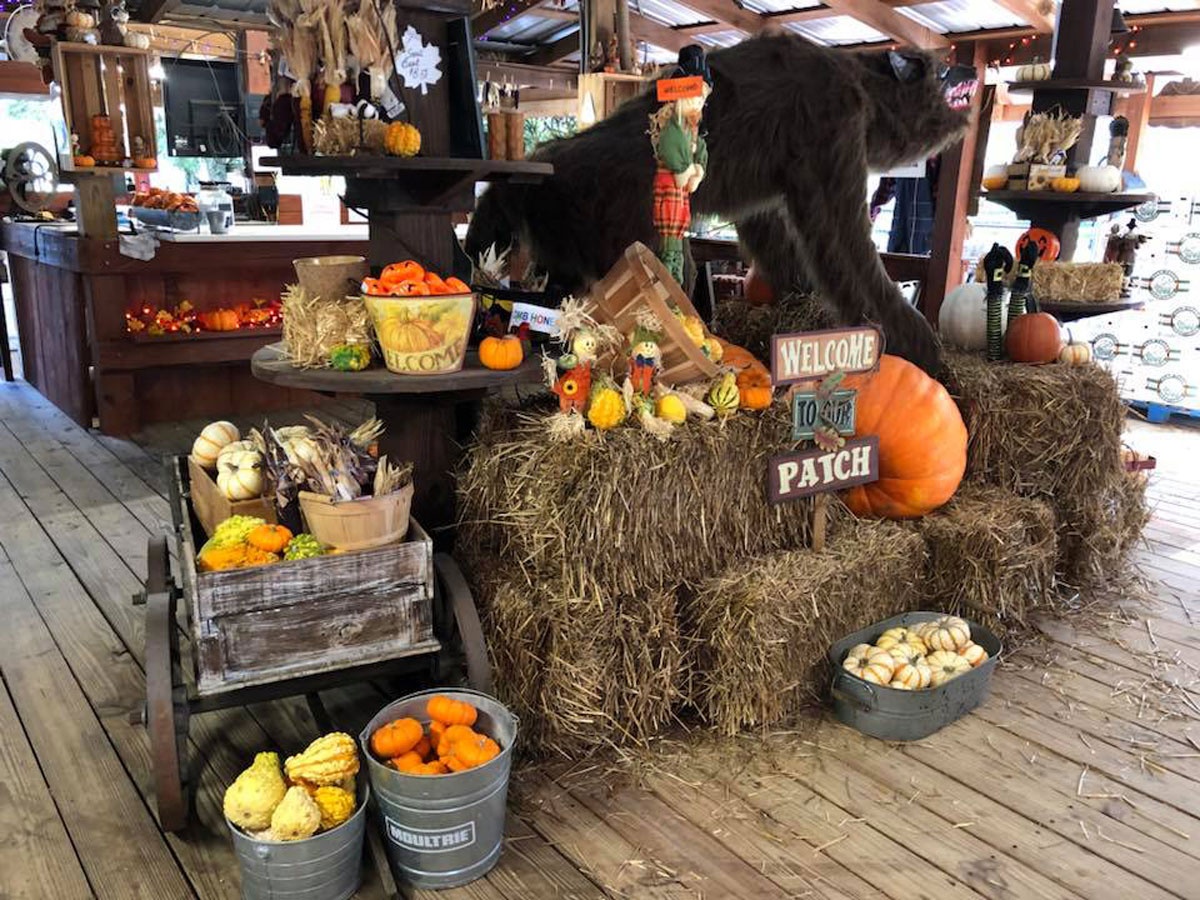 pumpkins and haystacks stacked inside a store