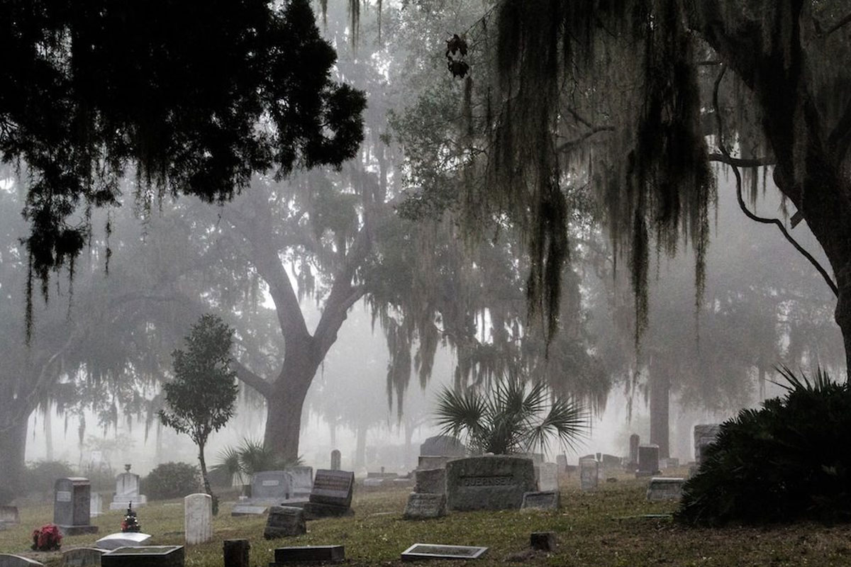 Foggy day at a cemetery with gravestones and mossy oaks
