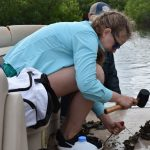 Racing to Save the Indian River Lagoon