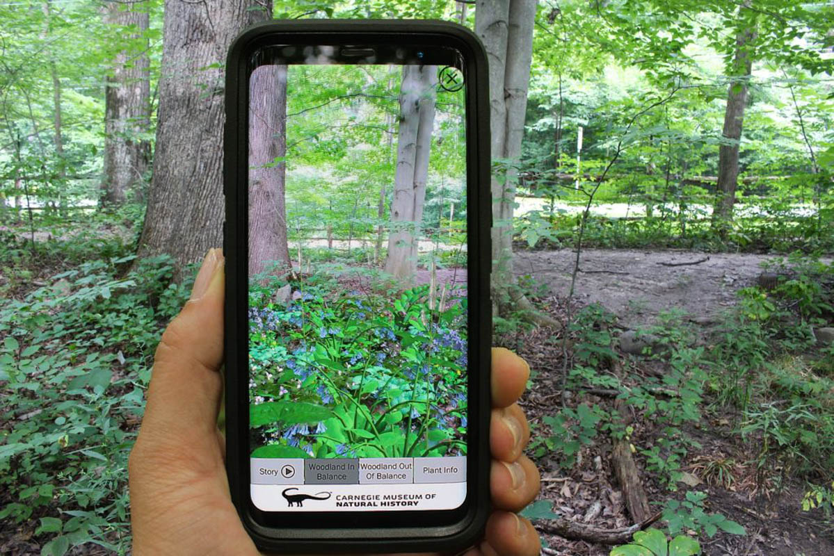Feed image for UCF Partners with Carnegie Museum on Augmented Reality App That Brings Gardens to Life
