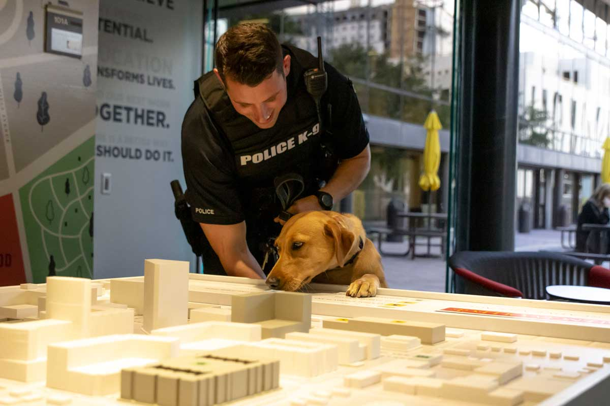 Police officer bends to look at golden lab, Blue