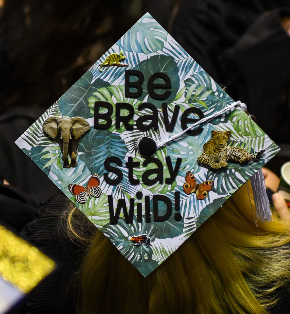 Grad cap decorated with text: Be Brave, Stay Wild with jungle theme