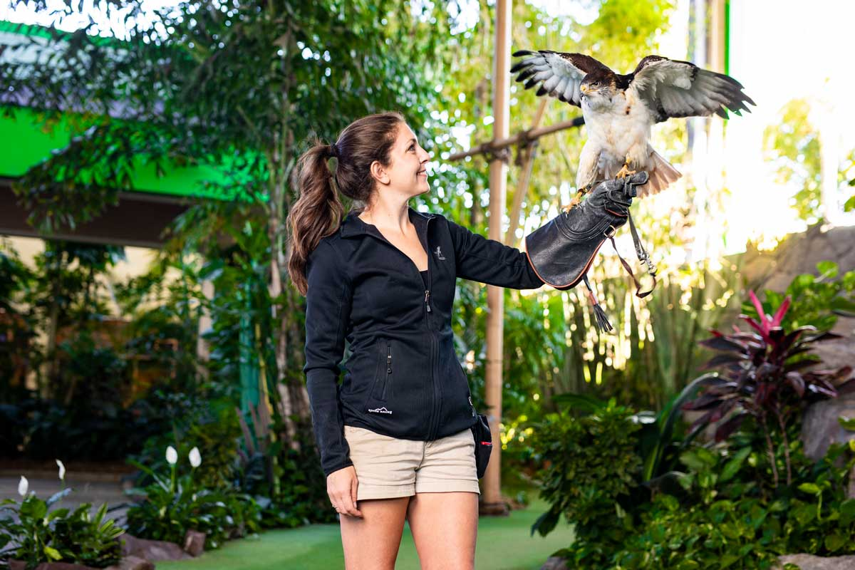 Woman extends arm with bird perched on her hand