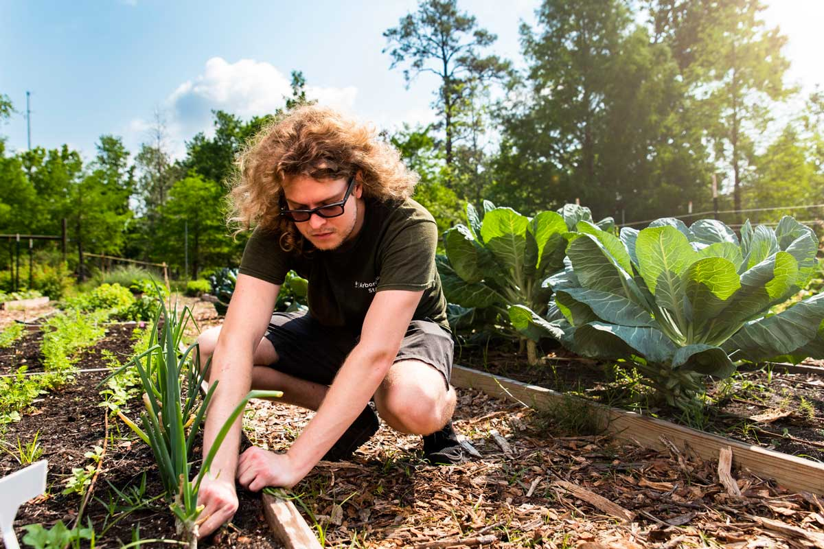 Man wearing glasses squats near planters in UCF Arboretum on sunny day