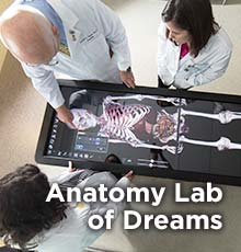 Anatomy Lab of Dreams