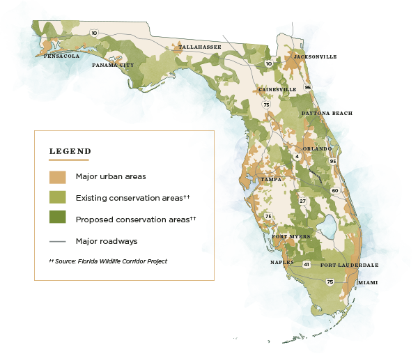 Florida map displaying the existing proposed and urban areas