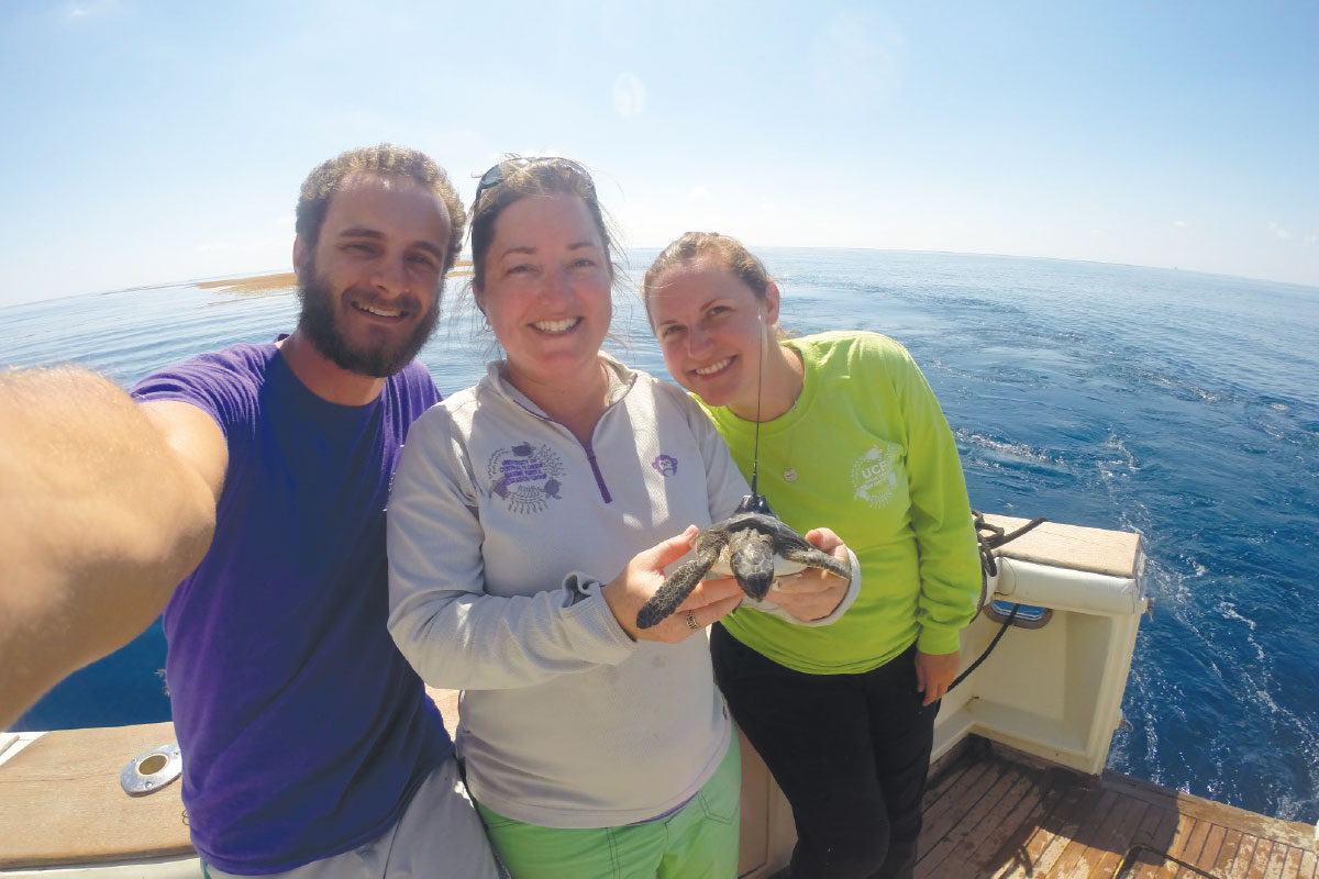 UCF researchers hold a juvenile turtle that has a tracking device on its back