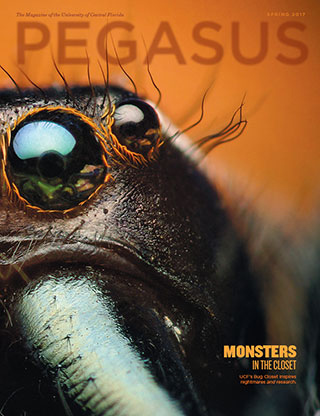 pegasus magazine cover Spring 2017 a bugs eye upclose