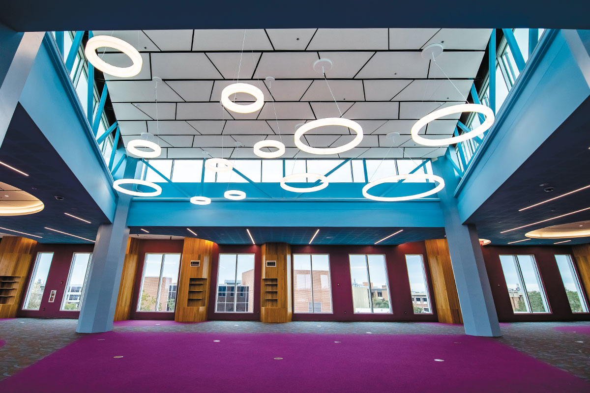 Circular lighting fixtures hang above purple carpet in a study room filled with large windows.