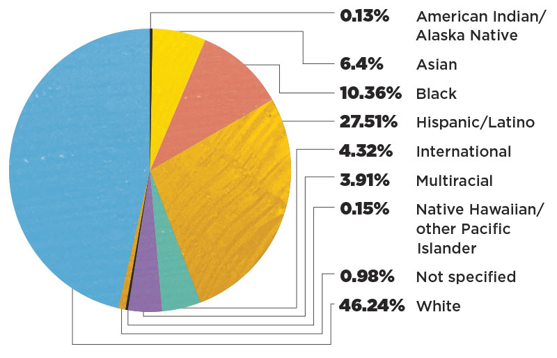 Pie chart showing Ethnicity of Students at UCF. .13% American Indian/Alaska Native. 6.4% Asian. 10.36% Black. 27.51% Hispanic. 4.32% International. 3.91% Multiracial. .15% Native Hawaiian/other Pacific Islander. 0.98% Not sure. 46.24% White.