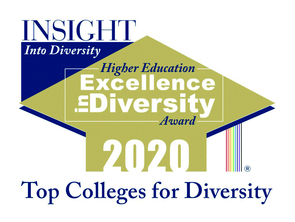 Insight from Diversity Higher Education Excellence in Diversity Award 2020 Logo.