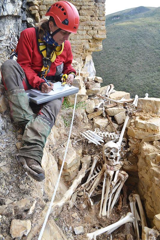Studying Bones